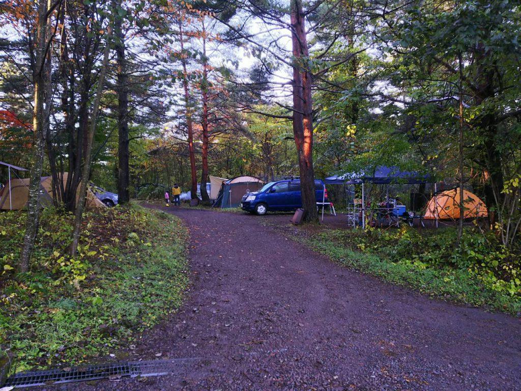 カンパーニャ嬬恋キャンプ場の林間サイト